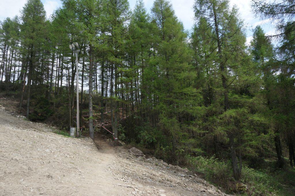 Zmiany na trasie DH w Joy Ride Bikeparku Kluszkowce